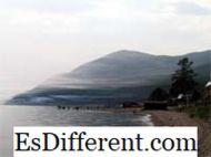Differenza tra acquatico e marino