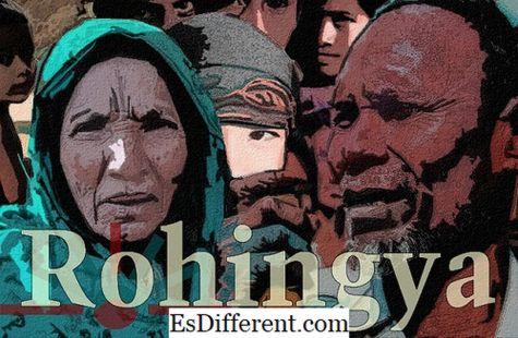 Rohingyas અને બંગાળીઓ વચ્ચે તફાવત