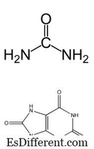 Differenza tra urea e acido urico